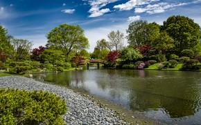 Picture the sky, the sun, clouds, trees, bridge, pond, Park, stones, people, USA, the bushes, Missouri …
