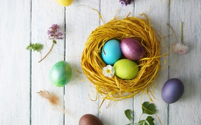 Picture flowers, holiday, eggs, Easter, socket