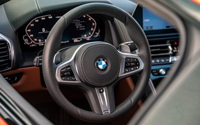 Picture coupe, BMW, the wheel, 2018, 8-Series, 2019, M850i xDrive, Eight, G15