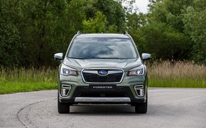 Picture greens, plants, Subaru, front, crossover, Forester, 2019