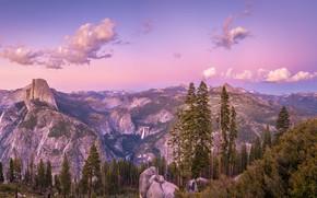 Picture trees, mountains, CA, USA, Yosemite, California, Yosemite Valley, Glacier Point