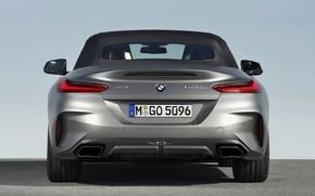 Picture roof, grey, BMW, Roadster, rear view, BMW Z4, M40i, Z4, 2019, G29