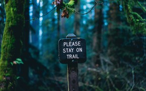 Picture plate, nature, sign, forests, macro, blur, bokeh, inscription, pillar, signage