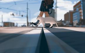 Picture the sky, feet, posts, wire, perspective, Japan, schoolgirl, portfolio, spotted cat, crosswalk, city street