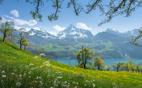 Picture landscape, mountains, nature, lake, spring, Switzerland, slope, flowering