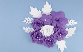 Picture flowers, paper, background, pattern, Decoration