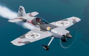 Picture flight, FAR-41, XtremeAir Sbach 300