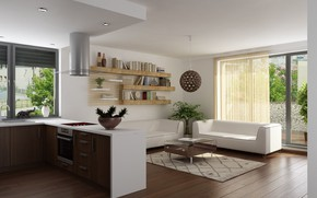 Picture interior, kitchen, living room