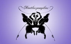 Picture music, album, rock, Nautilus Pompilius, Foreign Land