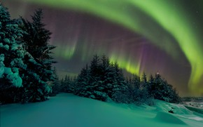 Picture The sky, Night, Northern lights