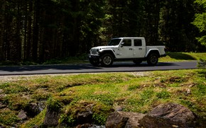 Picture road, white, movement, SUV, pickup, Gladiator, 4x4, Jeep, Rubicon, 2019