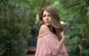 Picture look, girl, model, hair, Karina, Tanya Markova
