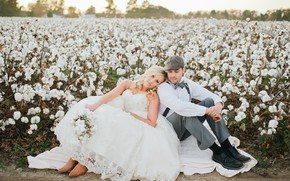 Picture field, girl, dress, male, cotton, the bride, wedding
