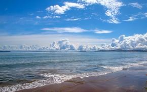 Wallpaper sea, beach, summer, the sky