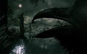Picture grass, night, rendering, darkness, bird, the moon, the darkness, black, beak, profile, Raven, pond