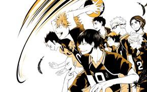 Picture the ball, team, guys, volleyball, Haikyuu, Karasuma