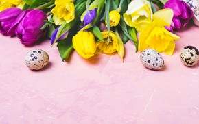 Picture flowers, eggs, colorful, Easter, tulips, happy, flowers, tulips, Easter, eggs
