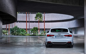 Picture Audi, rear view, RS5, Sportback, RS 5, 2020