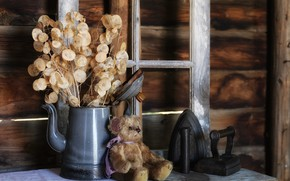Picture glass, leaves, old, childhood, comfort, house, style, retro, table, background, toy, frame, bouquet, bear, dry, …