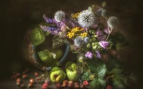 Picture raspberry, apples, bouquet, hazelnuts, Echinops