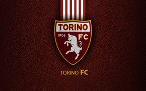 Picture wallpaper, sport, logo, football, Torino, Italian Seria A