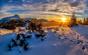 Picture winter, forest, the sky, the sun, clouds, rays, light, snow, sunset, mountains, traces, blue, hills, …