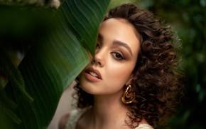 Picture curls, sponge, teeth, Lada, brown-eyed, Churganova Marina