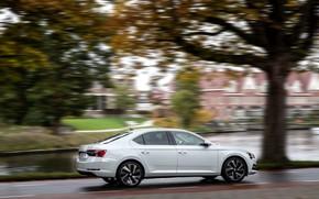 Picture sedan, in motion, hybrid, Skoda, Skoda, Superb, 2020, 2019, Superb iV