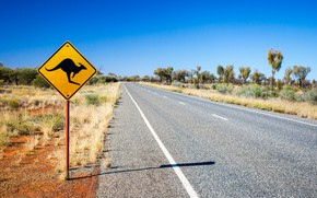 Picture caution, street, road sign, Kangaroo sign