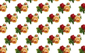 Picture retro, vintage, Roses, Wallpaper, background., Pattern
