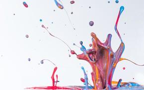 Picture color, drops, macro, paint, splash, white background