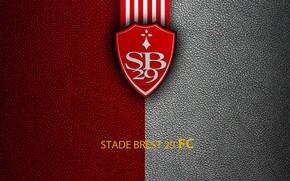 Picture wallpaper, sport, logo, football, Ligue 1, Stade Brest 29