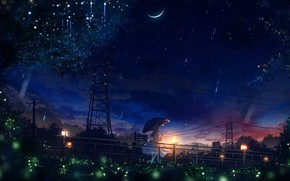 Picture fireflies, wire, Power lines, lights, girl, walk, new moon, starry sky, Starfall, under the umbrella, …