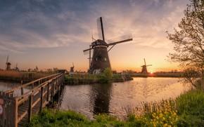 Picture grass, the sun, rays, landscape, nature, river, morning, village, mill, Netherlands, the bridge, Holland, Kinderdijk