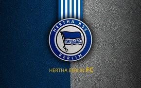 Picture wallpaper, sport, logo, football, Bundesliga, Hertha Berlin