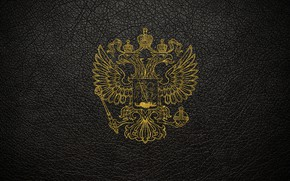 Picture leather, scratches, gold, black background, coat of arms, Russia, coat of arms of Russia
