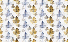 Picture leaves, background, colors, texture, pattern, leaves