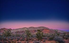 Picture night, hills, desert, stars