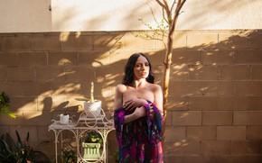 Picture wall, house, dress, woman, model, brunette, purple, balcony, Carissa White