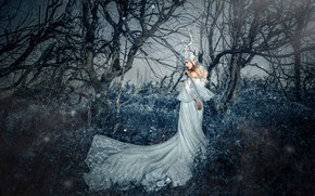 Picture forest, grass, girl, light, trees, branches, nature, face, pose, style, tree, thickets, glade, hands, fairy, …