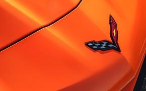 Picture orange, Corvette, Chevrolet, emblem, ZR1, 2019