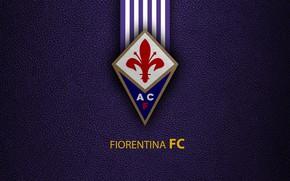 Picture wallpaper, sport, logo, football, Fiorentina, Italian Seria A