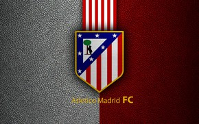 Picture wallpaper, sport, logo, football, Atletico Madrid, Primera Division
