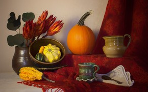 Picture red, food, pumpkin, still life, vegetables, shawl