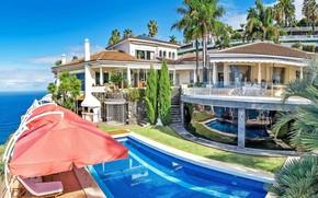 Picture palm trees, Villa, pool, architecture, terrace, cypress, Tenerife, Las Casas Canarias, Villa Circense