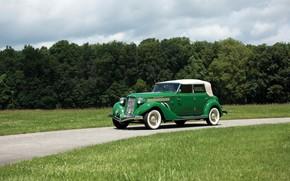 Picture green, grass, tree, 1935, classic car, auburn