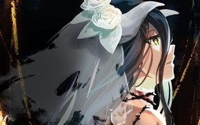Picture Overlord, the bride, veil, The Lord, Albedo