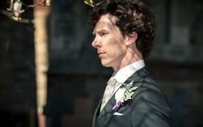 Picture rose, tuxedo, Benedict Cumberbatch, Sherlock, Sherlock BBC, Sherlock Holmes, Sherlock (TV series), the best man, …