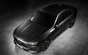 Picture sedan, 2018, Sedan, four-door, Vinfast, Lux A2.0