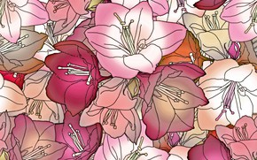 Picture flowers, pink, texture, buds, design, pattern, floral